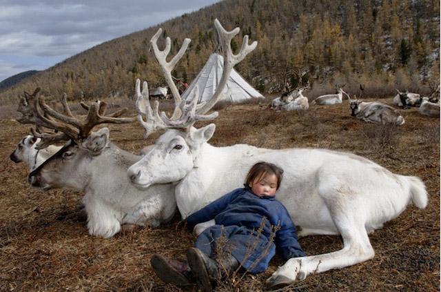 reindeerriders01