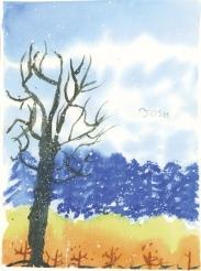06-JP-Changing-Seasons